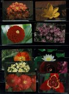 TURKISH 2003 PHONECARD FLOWERS SET OF 10 CARDS USED VF!! - Flowers