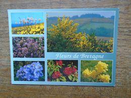 Bretagne , Fleurs De Bretagne - Bretagne