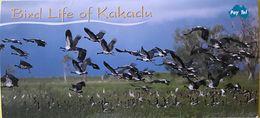 AUSTRALIE  -  Holder  -  Pay.Tel  -  Bird Life Of Kakadu  -  3 Cards  -  $ 5, 10 And 20 - Australië