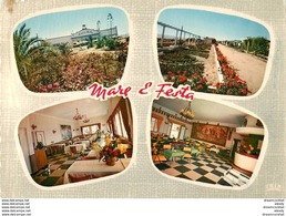Cpsm Cpm Corse Hôtel Mare E Festa 1964 - France