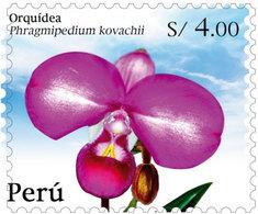 Peru 2020 Flora Flower Orchid 1v MNH - Perú
