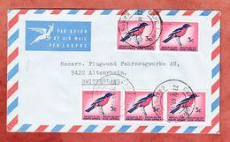 Luftpost, Rotbauchwuerger, Cape Town Kapstad Nach Altenrhein Schweiz 1969 (94604) - Afrique Du Sud (1961-...)
