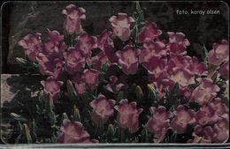 TURKISH 2003 PHONECARDS FLOWERS USED VF!! - Flowers