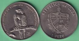 2004-MN-203 CUBA UNC 1$ CUPRO-NICKEL 2004. FAUNA IBERICA EN EXTINCION ESPAÑA. HALCON PEREGRINO BIRD. - Cuba