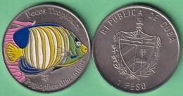 2005-MN-202 CUBA UNC 1$ CUPRO-NICKEL 2005. PECES TROPICALES FISH PAINTING PYGLOPITESS. - Cuba