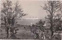"""Be - Cpsm Petit Format CHERBOURG - Arrivée Du Paquebot """"Queen Mary"""" Dans La Brume - Cherbourg"""