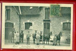 3552 - COUDRAY MONCEAUX - ECURIES DU CHATEAU - France