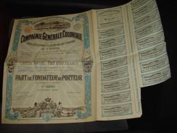 """Part Fondateur""""Cie Gen.coloniale Pour Le Developpement Du Commerce Et De L'industrie Au Congo""""1898 - Industrie"""