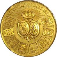 ESPAÑA. MEDALLA EXPOSICIÓN REGIONAL DE CÁDIZ 1.879. BRONCE DORADO. ESPAGNE. SPAIN MEDAL - Profesionales/De Sociedad