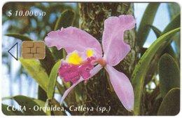 CUBA A-322 Chip Etecsa - Plant, Flower, Orchid - Used - Cuba