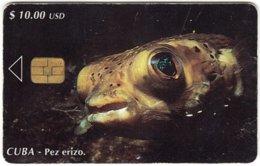 CUBA A-328 Chip Etecsa - Animal, Sea Life, Fish - Used - Cuba