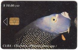 CUBA A-330 Chip Etecsa - Animal, Sea Life, Fish - Used - Cuba
