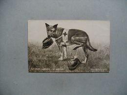 Le Chien Sanitaire ...et Patriote   -  Guerre 1914 - 1918 - Hunde