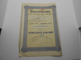 """Action De Capital """"Carrières Et Fours à Chaux Du Pays De Liege""""(Chaudfontaine) 1924 Chaux Et Ciment. - Industrie"""