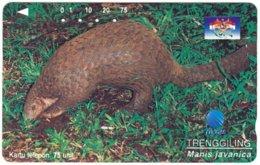 INDONESIA A-724 Magnetic Telkom - Animal, Armadillo - Used - Indonesië