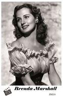 BRENDA MARSHALL (PB6) - Film Star Pin Up PHOTO POSTCARD - Pandora Box Edition Year 2007 - Femmes Célèbres