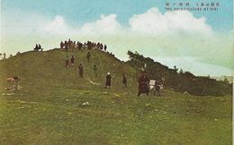 134803 JAPAN THE SHIMEIGADAKE MT HIEI POSTAL POSTCARD - Giappone