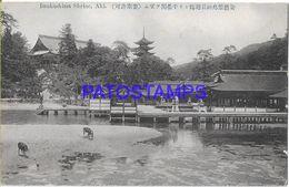134826 JAPAN AKI ITSUKUSHIMA SHRINE POSTAL POSTCARD - Giappone
