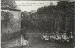 61thf  327 CPA - DORDOGNE - EN PERIGORD - UNE GARDEUSE D' OIES - Frankreich
