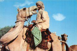 6481  UNITED ARAB EMIRATES  31-0231 - Emirats Arabes Unis