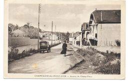 CHAMPAGNE AU MONT D'OR : AVENUE DU CHAMP FLEURS - France