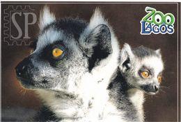Portugal Zoo Lagos Lémure Lemur Maki - Animals