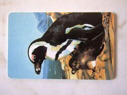 NAMIBIA    PINGOUINS      NS 50 - Namibië