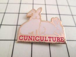 1214e Pin's Pins / Beau Et Rare / THEME : ANIMAUX / L'ELEVAGE DE LAPIN C'EST LA CUNICULTURE Et L'élevage De Lapine C'est - Animales