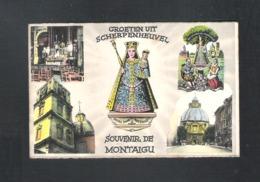 SCHERPENHEUVEL - GROETEN UIT SCHERPENHEUVEL - SOUVENIR DE MONTAIGU  (12.736) - Scherpenheuvel-Zichem