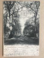 GERMANY Herrenkrug B. Magdeburg - Allee - 1909 - Magdeburg