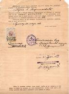 1910 MONTENEGRO, KING NIKOLA, COURT STAMP, 6 PERPERA, - Montenegro
