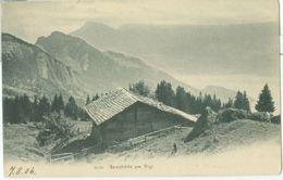Sennhütte Am Rigi 1906 - Nicht Gelaufen. (Gebr. Wehrli - Kilchberg, Zürich) - SZ Schwyz