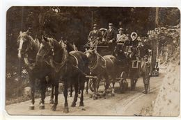 DC1547 - Pferde Kutsche Horse Pferd 1910 - Cavalli