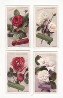 Chromo  CHOCOLAT SUCHARD    Lot De 8     Série 187    Fleurs, Roses     10.5 X 6.1 Cm - Suchard