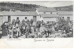 Turquie Turkey - Izmir Smyrne - Campement De Chameaux - Türkei