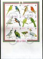 Gambia 1993 Birds Parrot Wildlife Animals Sc 1375 Sheetlet FDC # 19089 - Perroquets & Tropicaux