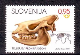 Slovenia 2020 Dinosaur FOSIL Tellerjev Prohirakodon MNH - Slovenia
