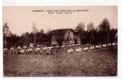 Jasseron - Villa Des Abeilles - Rucher Paris Auguste - Apiculture  -  CPA ° - France
