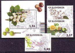 Slovenia 2020 Flora (Bl.+3) MNH - Slovenia