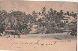 Cartolina - Postcard /  Viaggiata - Sent /  Tanga, Occupazione Tedesca - Gouvernements Garden - Tanzanie
