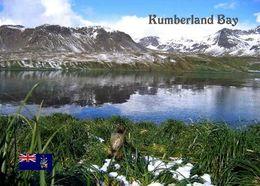 South Georgia Kumberland Bay New Postcard Südgeorgien AK - Postkaarten