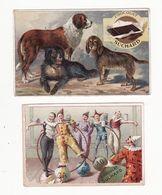 Chromo  CHOCOLAT SUCHARD    Lot De 2    Chiens, Cirque, Clowns - Suchard