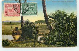 ERYTHREE - TOCOLAI - Carovana Di Passaggio - Eritrea