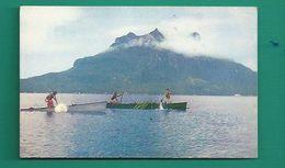 OCÉANIE -  TAHITI - LA PÊCHE AUX CAILLOUX - ON FRAPPE L'EAU POUR RABATTRE LES POISSONS VERS LA RIVE - Tahiti