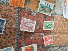ARGENTINA UOMINI ILLUSTRI 1 VALORE - Postzegels