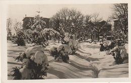 Tarjeta Postal. España. Santander.  Reinosa 1953. Paseo De Casimiro Sainz. Nieve. Arboles. Construcciones. Deportes Ebro - Postcards