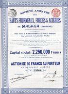 HAUTS-FOURNEAUX, FORGES & ACIÉRIES De MALAGA (Espagne) - Unclassified
