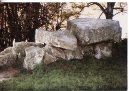 N°19 R -cpsm Montguyon -le Dolmen- - Dolmen & Menhirs
