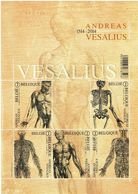 2014 - BL 215 - VESALIUS - Velletjes