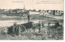 CPA  FRANCE - SAINT MALO La Récolte Du Goemon   - B 75 - Saint Malo